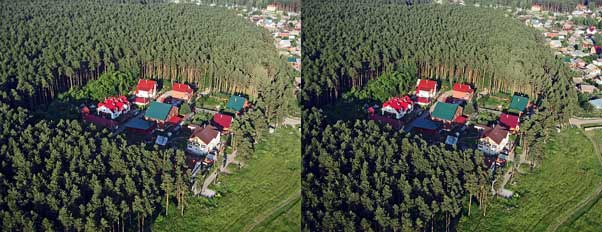 вид на лес с параплана.