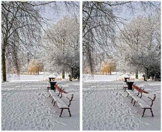 Стереопара зимний парк.