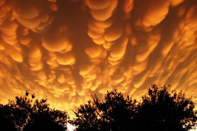 Вемеобразные облака на закате